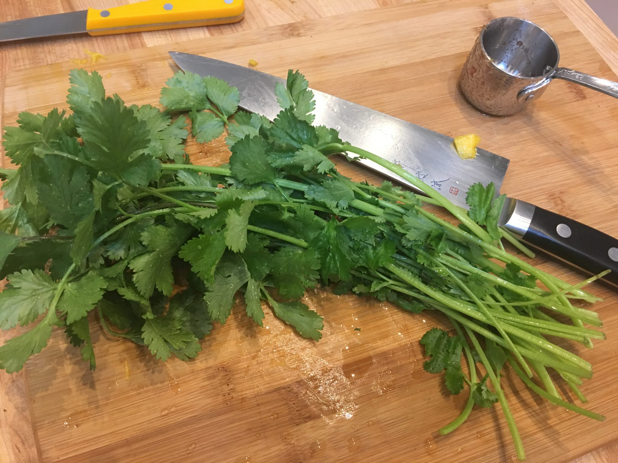 "A ""handful"" of Cilantro"