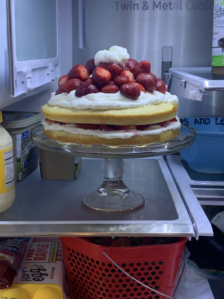 Store the cake in the Fridge